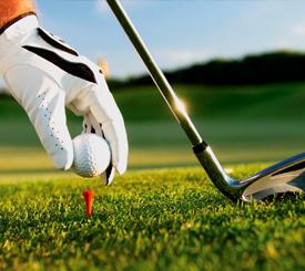 275x245 golf
